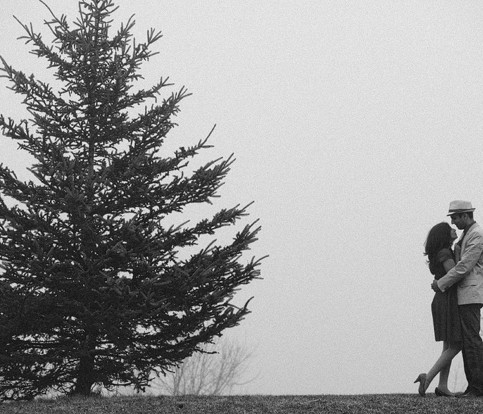 Soumya+Ajay: Engaged! | Toronto Engagement Photography